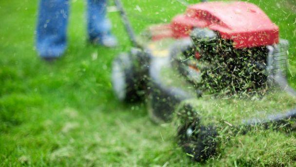 Pozor. Zberný dvor má nové pravidlá pre ukladanie zeleného odpadu